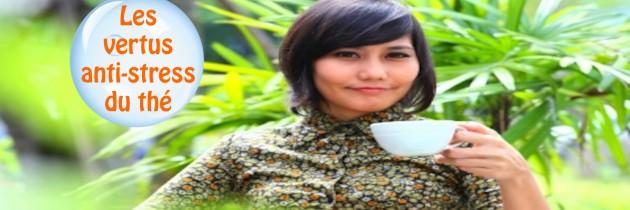 Faites connaissance avec les vertus anti-stress du thé