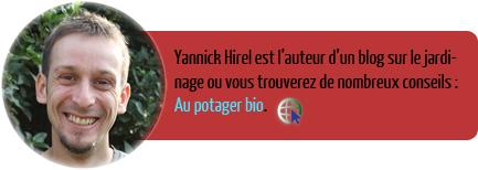 Yannick-Hirel