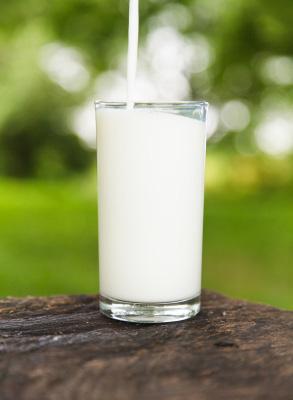 rentrée lait de jument verre1