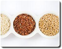 cerveau-cereales-completes_fmt